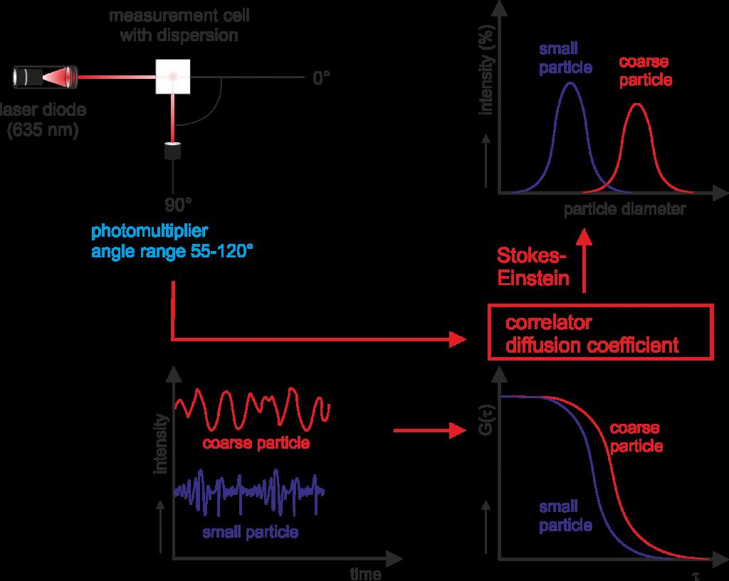 courbe de corrélation DLS taille particule